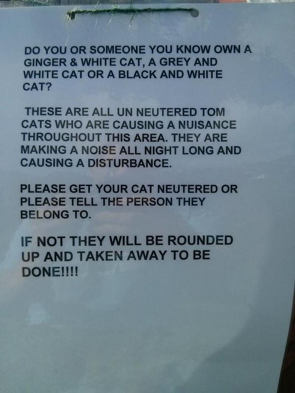 Beware male cats!  - embedded image