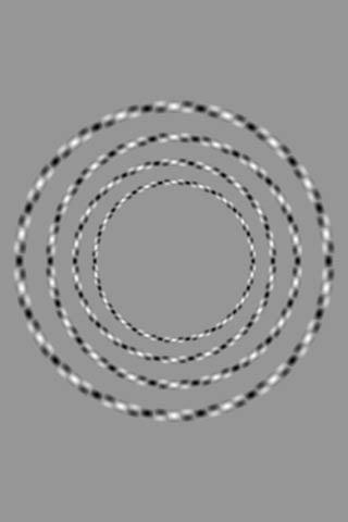 RT There are only 4 circles and none of them touch.  - embedded image