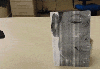 RT This is my new favorite GIF.  - embedded image
