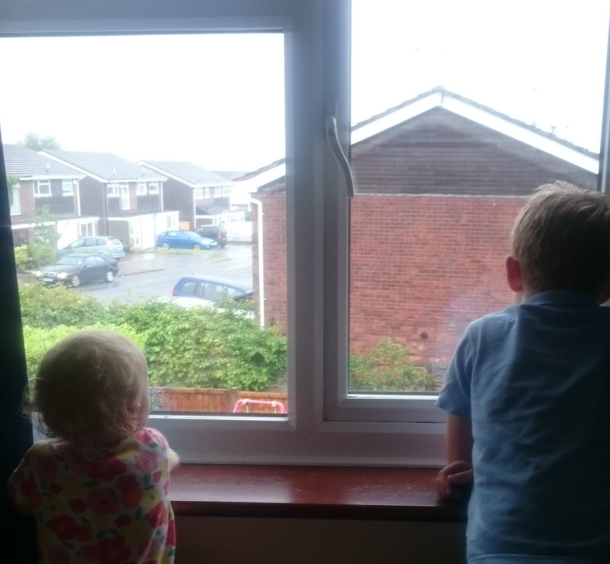 Gawping at the rain and neighbours.  - embedded image