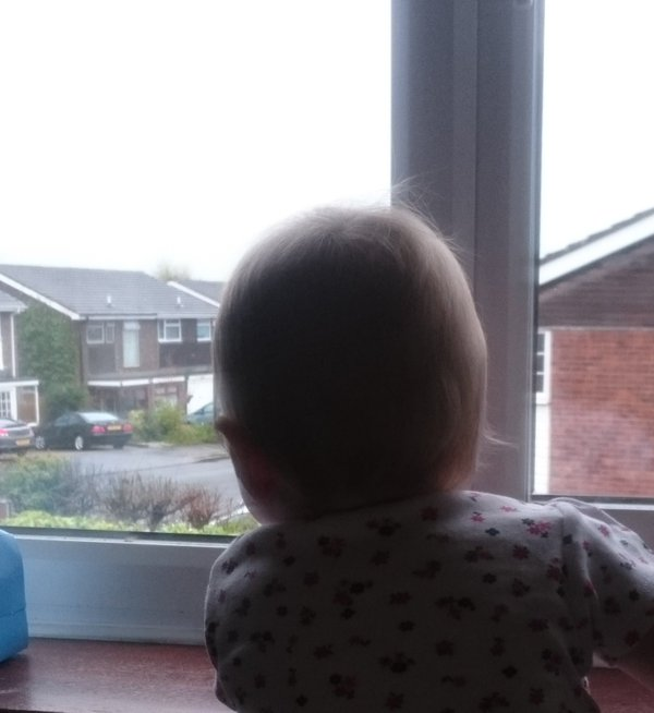 I appear to have raised a curtain twitcher / nosey parker ...  Potential recruit for neighbourhood watch?  - embedded image