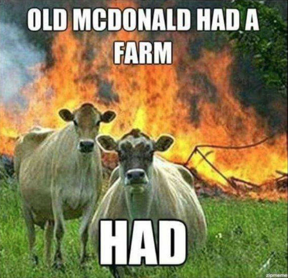RT IMHO, the world needs more anti-capitalist cow memes.  - embedded image